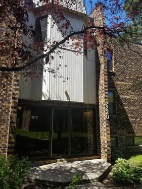2220 Country Club Unit 16, Woodridge, IL 60517