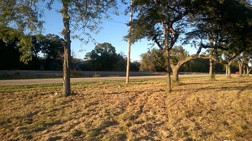 6301 Oak Forest, Tinley Park, IL 60477