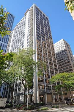 222 E Pearson Unit 1101, Chicago, IL 60611 Streeterville