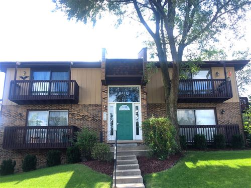226 Manor Unit 3, New Lenox, IL 60451