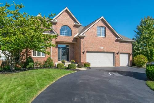 12912 Hawks Bill, Plainfield, IL 60585