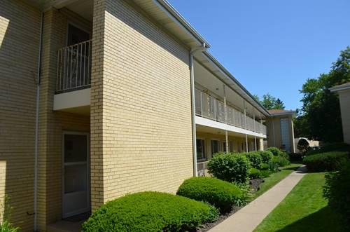 1035 N Northwest Unit B2, Park Ridge, IL 60068