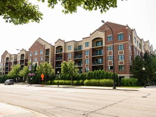 5 W Central Unit 101, Mount Prospect, IL 60056