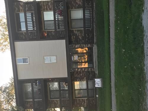 22144 Ridgeway Unit 2S, Richton Park, IL 60471