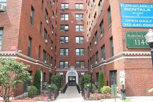 1140 N La Salle Unit 100, Chicago, IL 60610 Near North