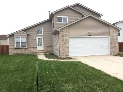 1403 Lasser, Plainfield, IL 60586