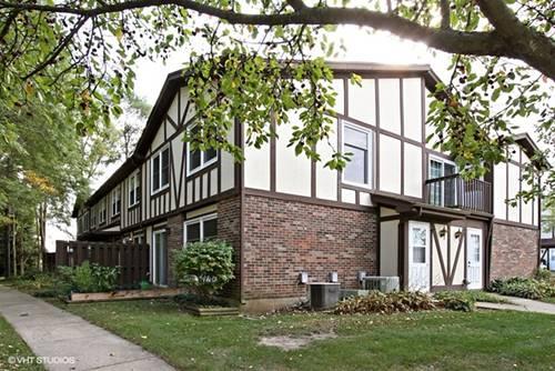 420 St Johns Unit E, Woodstock, IL 60098