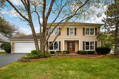 1017 Forest View, Naperville, IL 60563