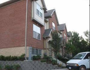 213 Riverfront Unit 213, Mount Prospect, IL 60056