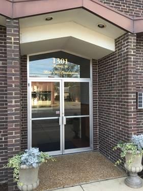 1301 W Touhy Unit 312, Park Ridge, IL 60068