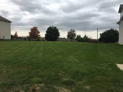 25746 Meadowland, Plainfield, IL 60585