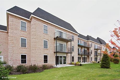 5201 Carriageway Unit 311, Rolling Meadows, IL 60008