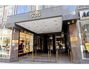 535 N Michigan Unit 803, Chicago, IL 60611 Streeterville