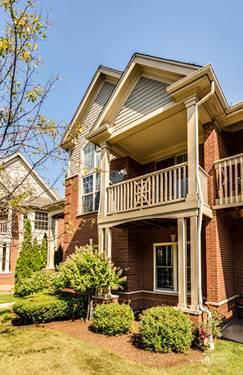 206 Callie, Morton Grove, IL 60053