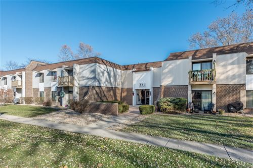 541 73rd Unit 105, Downers Grove, IL 60516