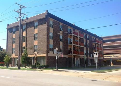 5202 Washington Unit 401, Downers Grove, IL 60515