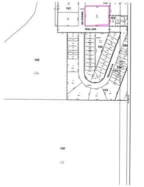 .75 Acre Oriole, Peotone, IL 60468
