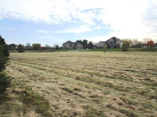 LOT 2 Citation, Campton Hills, IL 60175