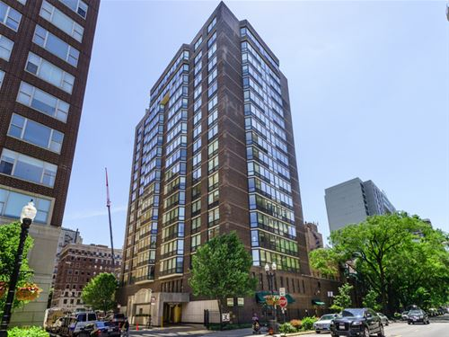 21 W Goethe Unit 9E, Chicago, IL 60610