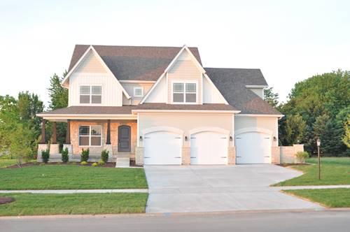 13259 Wellesley, Plainfield, IL 60585