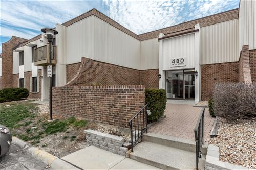 480 74th Unit 106, Downers Grove, IL 60516