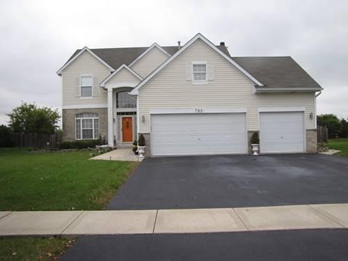 703 Silver Leaf, Joliet, IL 60431
