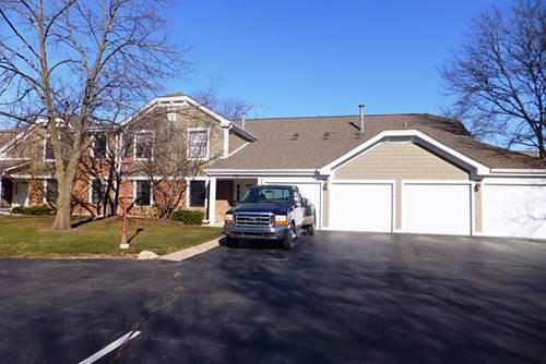 219 Oak Knoll Unit D2, Schaumburg, IL 60193