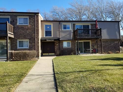 337 N Carter Unit 104, Palatine, IL 60067