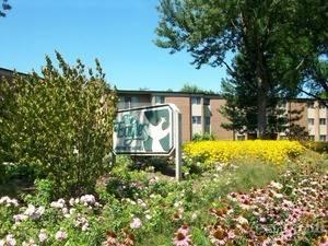 440 Eagle Unit 305, Elk Grove Village, IL 60007