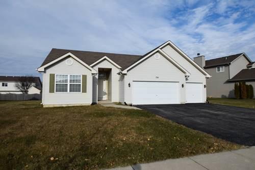 704 Vertin, Shorewood, IL 60404