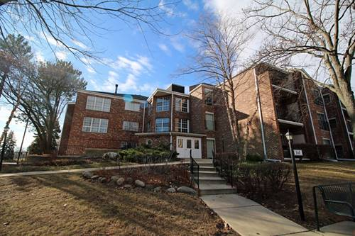 540 Biesterfield Unit 208, Elk Grove Village, IL 60007