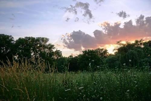 7202 Daybreak, Long Grove, IL 60060