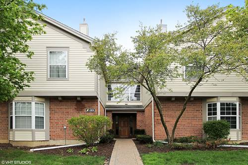 123 Willow Brook Unit 7, Schaumburg, IL 60195