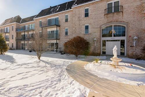 5201 Carriageway Unit 310, Rolling Meadows, IL 60008