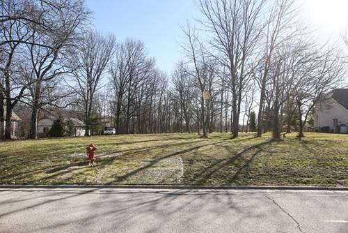 Lot 8 S Vine, Burr Ridge, IL 60527