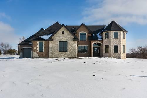 18445 Pine Prairie, Mokena, IL 60448