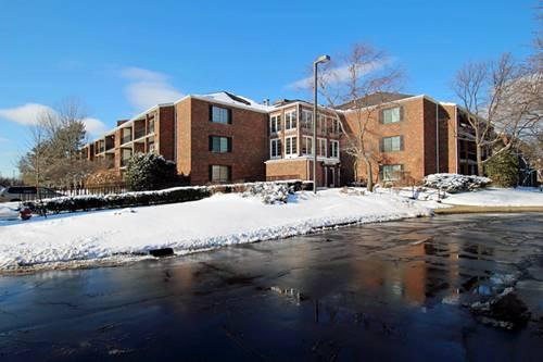 520 Biesterfield Unit 107, Elk Grove Village, IL 60007