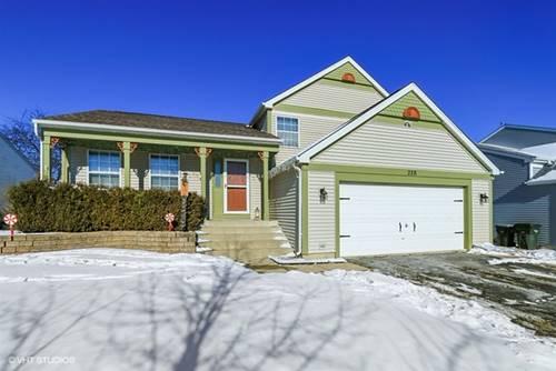 328 Katherine, Hainesville, IL 60030