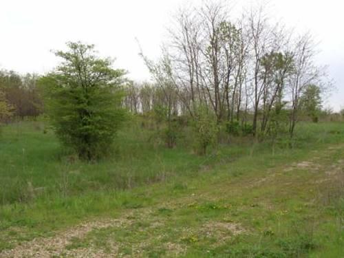 0S512 Autumn Woods, Elburn, IL 60119