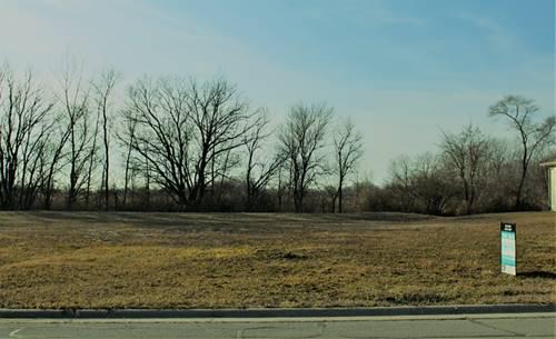 Lot 87 Robin, Coal City, IL 60416
