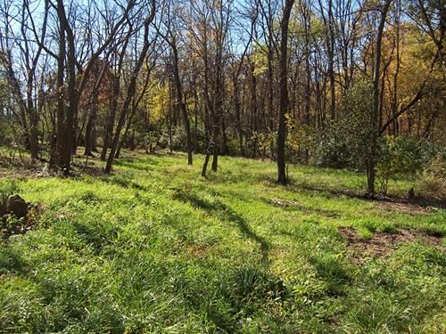 lot 2 Oak Meadow, Homer Glen, IL 60491