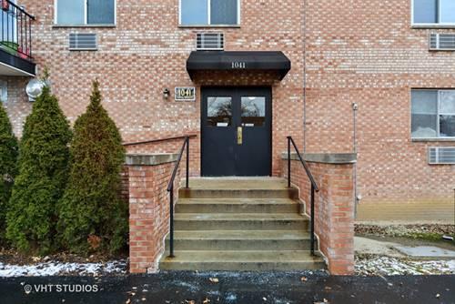 1041 N Mill Unit 207, Naperville, IL 60563