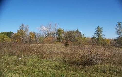 00 Prairie Ridge, Richmond, IL 60071
