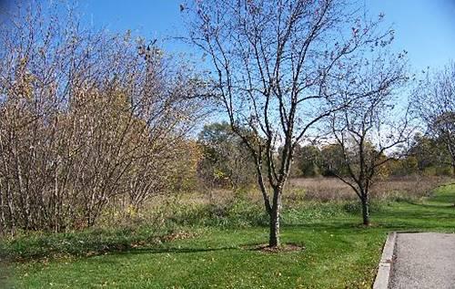 000 Prairie Ridge, Richmond, IL 60071