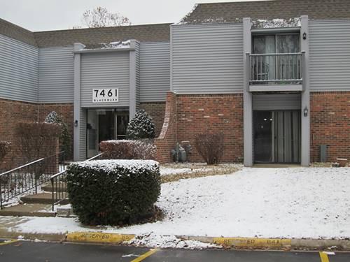 7461 Blackburn Unit 101, Downers Grove, IL 60516