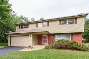 1310 N Dryden, Arlington Heights, IL 60004
