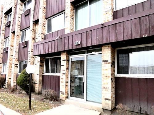 8657 W Foster Unit 1B, Chicago, IL 60656