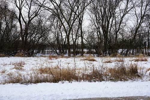 Lot 48 W South Bernice, Round Lake, IL 60073