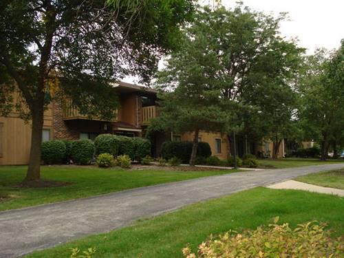 403 Dorchester Unit 107, Roselle, IL 60172
