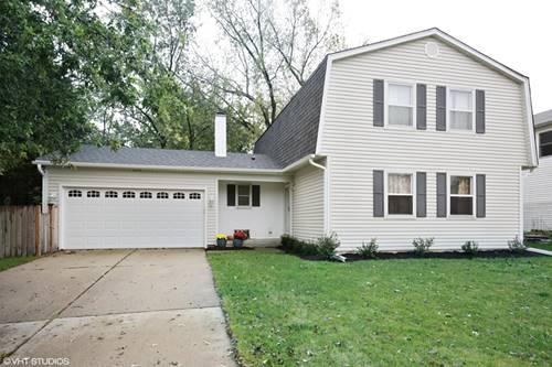 1137 Downing, Hoffman Estates, IL 60192
